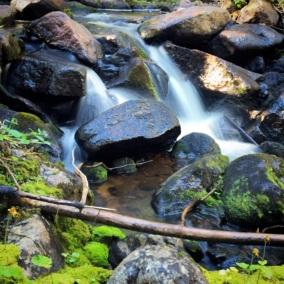 Tumble Creek Trail