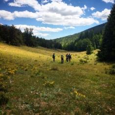 Exploring off Trail