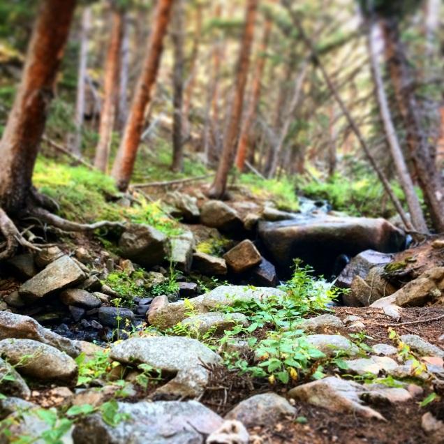 Tumble Creek