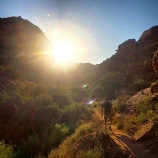 Golden Hour at Negro Bill Canyon